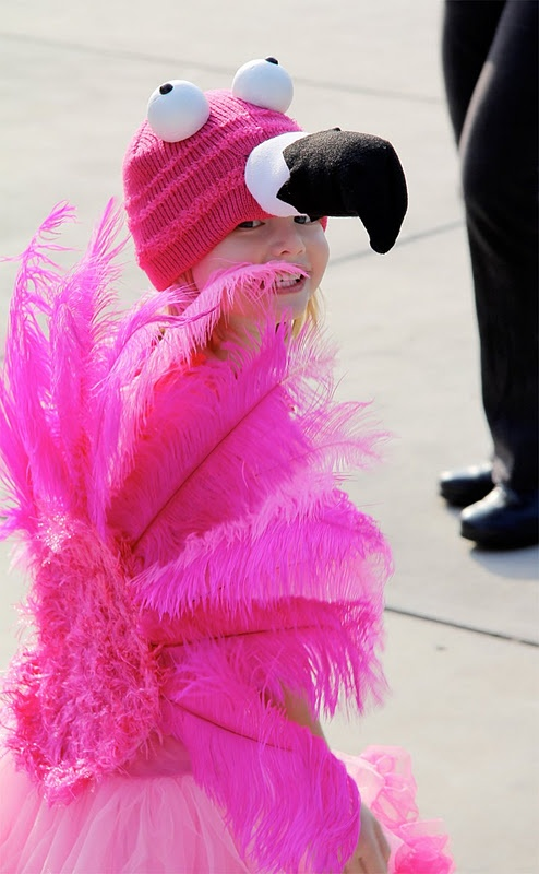 flamingo costume... need I say more?