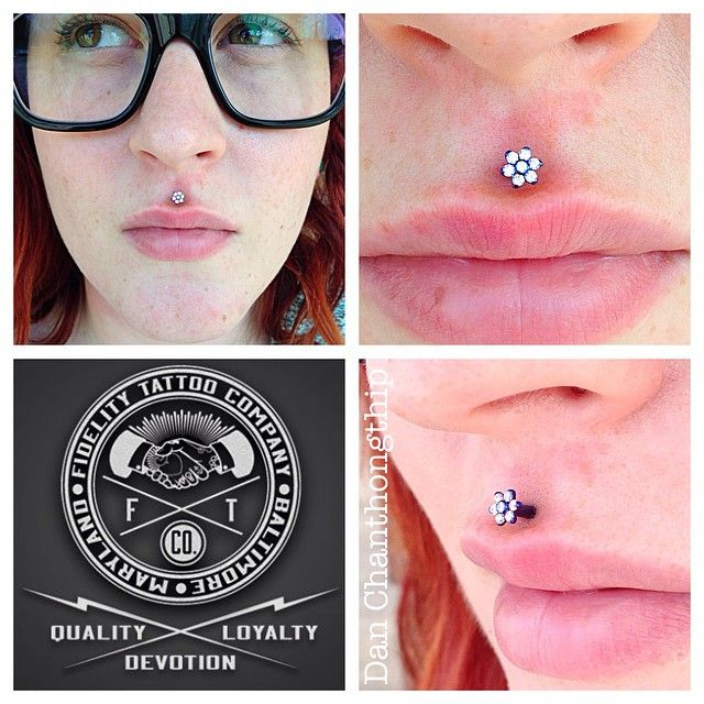Fresh freehand Philtrum featuring a Flower from Anatometal! #danchan #professional #bodypiercings #highquality #bodyjewelry #fidelitytattooco #jewelryadoptionagency #baltimore #maryland #dmv #anatometal #jewelryporn #philtrum #piercings #medusa #piercing #lippiercings #freehand #pierced #flowers #anodized #implantgradeASTMF136TI #namedroppingsoyouknow #noknockoffs @anatometalinc