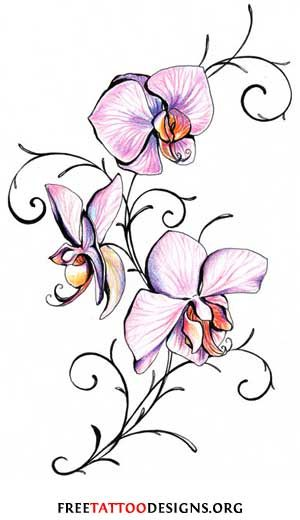 Flower Tattoos | Floral, Lily, Lotus, Tropical, Sunflower Tattoo Designs