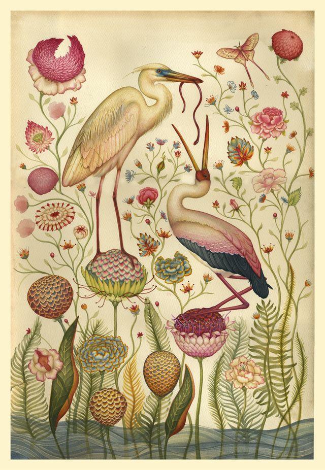 antique birds: Ears Birds, Antiques Books, Birds Gardens, Lindsey Carr, Color, Botanical Illustrations, Art, Flowers, Lindseycarr