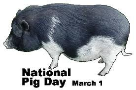 March 1  National Pig Day