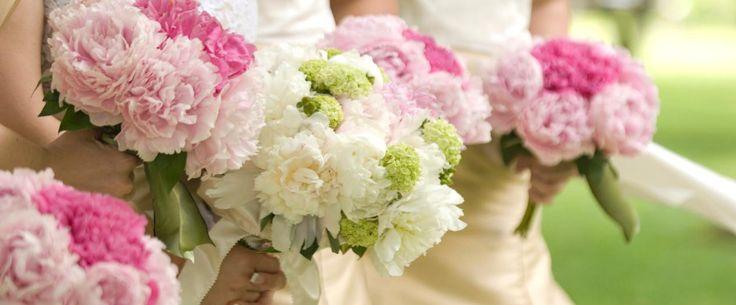 GAROFANO #bouquetfebbraio #sposa2016 #bride #bridal #matrimonio #nozze #wedding #matrimoniopartytstyle #location #trovalocation