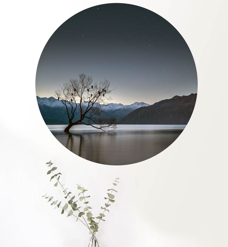 Beautiful photography by Simon Larkin printed onto a revolutionary self-adhesive, vinyl fabric. They are reusable, super easy to put up and will not damage paint or wallpaper, sticks onto walls, glass, tiles, concrete. Easy to install, just remove the backing paper and stick it on. It does not trap ...