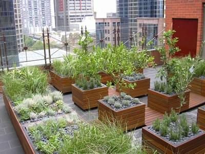 Rialto Tower, Melbourne. Roof garden