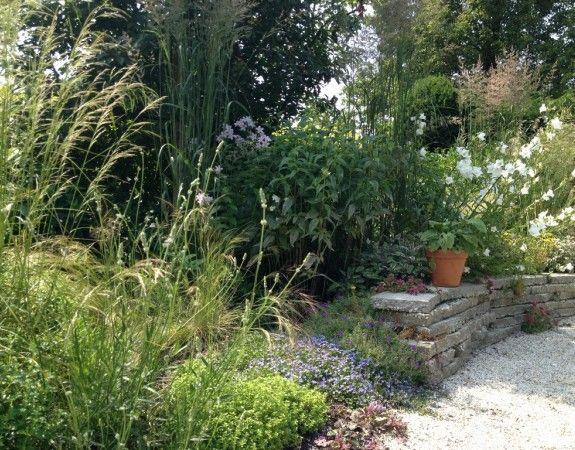 Weelderige beplanting in natuurlijke tuin.