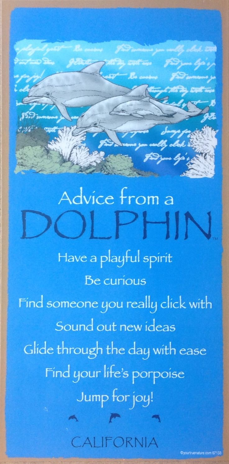 Advice From a Dolphin Sign                                                                                                                                                                                 More