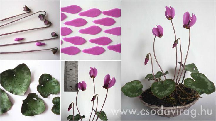 Cyclamen europaeum (Erdei ciklámen) - My clay flower https://www.facebook.com/Csodavirag