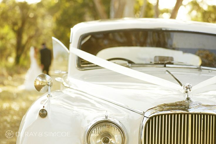Classic white wedding car with white ribbon Location ~ Kings Park, Perth Photography by DeRay & Simcoe