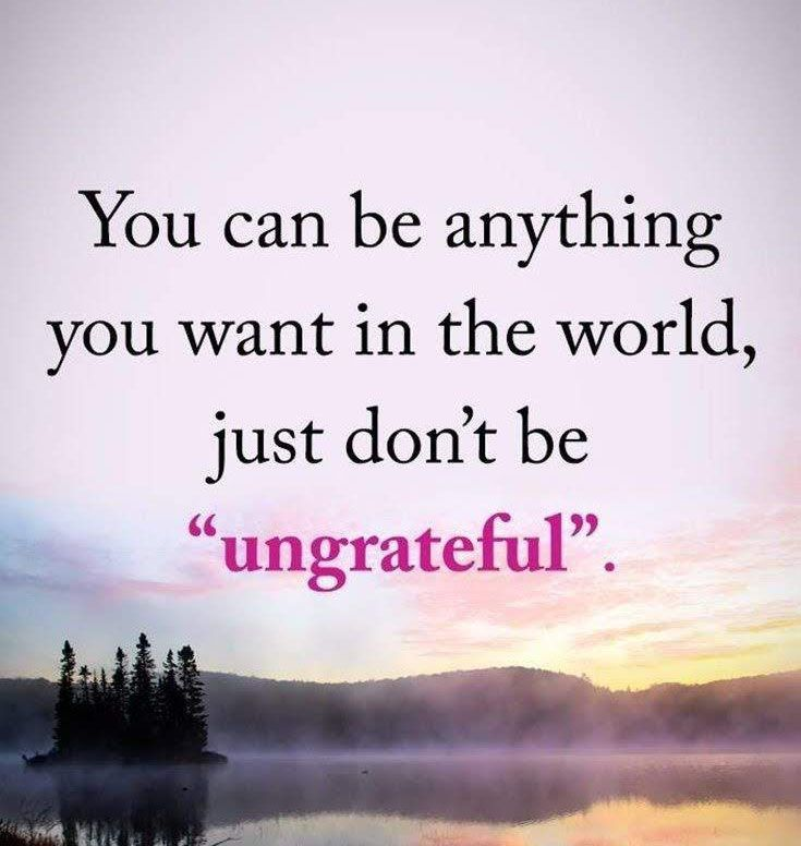 You Can Be Anything You Want In The World Just Don T Be Ungrateful Breakthroughcoaching Grateful Quotes Good Life Quotes Inspirational Quotes Motivation