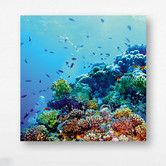 Eurographics: Deep Blue Sea Photographic Print on Deco Glass£67. this is very realistic I must say as a past Ocean lover.