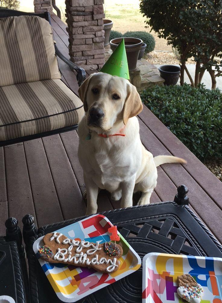 Happy Birthday Stone!!!!