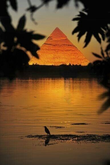 Sunset over the Egyptian pyramid