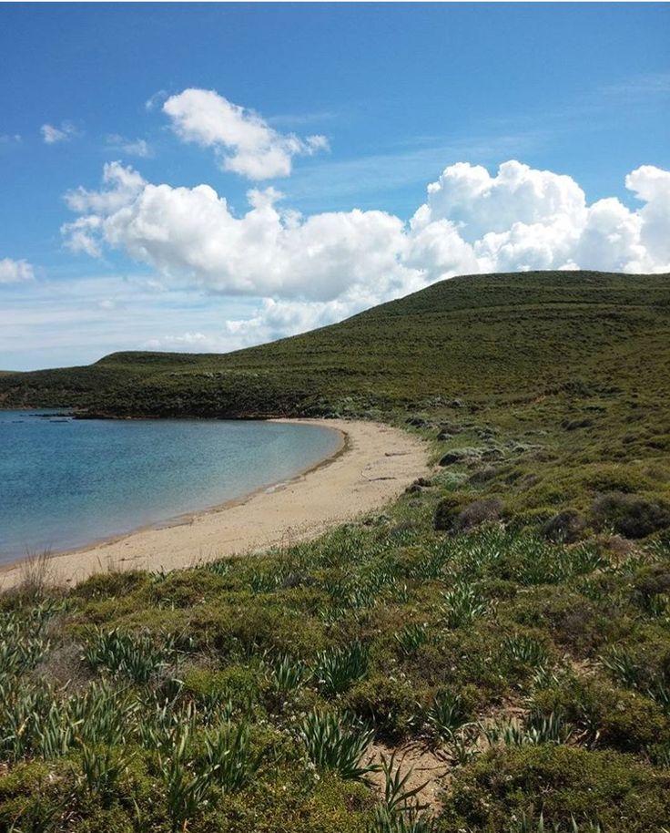 Μια από τις δεκάδες υπέροχες παραλίες της Λήμνου! Ποιος την αναγνωρίζει;   Φωτό: mysecretlimnos