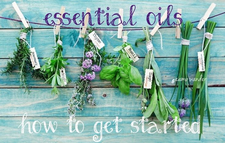 Get Started Using Pure Essential Oils