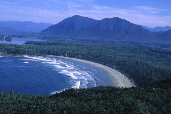 Tofino is celebrating being voted #1 Beach in Canada   pacificsands.com