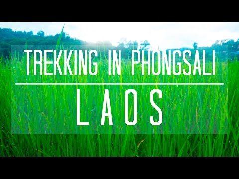 Trekking in Phongsali with Amazing Views - YouTube