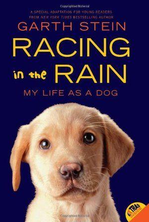 Racing in the Rain, http://www.e-librarieonline.com/racing-in-the-rain/