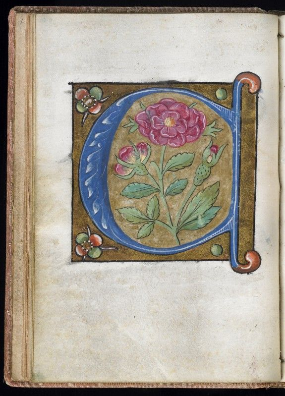 Leaf from Alphabet Book | France; Paris | 16th century | Walters Art Museum | Accession #: W.200.29V