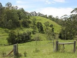 Kyogle hills