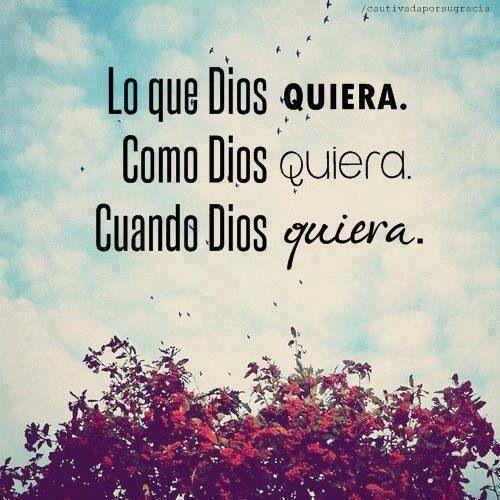 Gracias por oir mis Oraciones Señor y poner ese alto en mi vida....