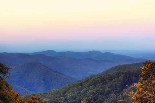 Tamborine Mountains at dusk