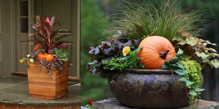 Bakers Village Garden Center Fabulous Fall Container