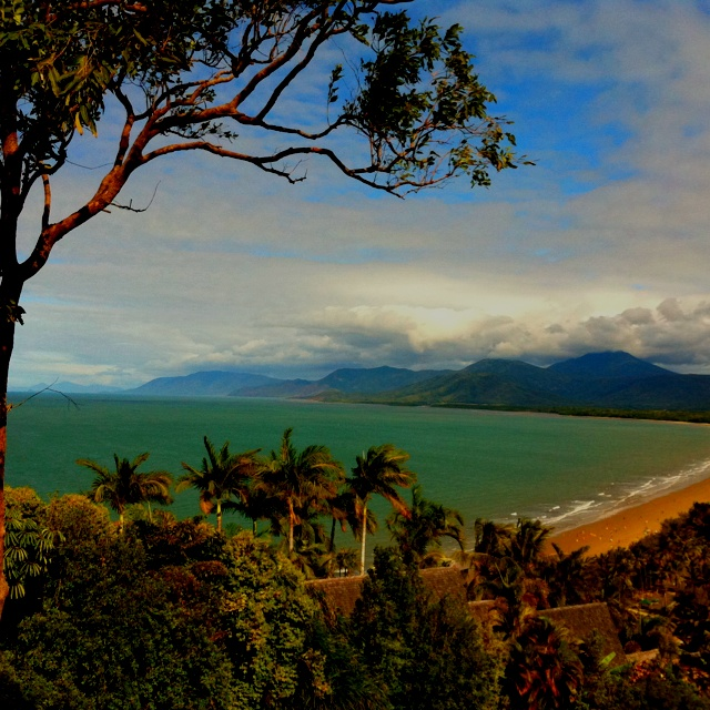 """Port Douglas, Australia...spent our 15th anniversary at the resort here. The saying is """"Where the rainforest meets the reef."""" Had breakfast with the parrots, took a prehistoric rainforest tour and played golf on a course shared with crocs (not the ugly clogs)."""