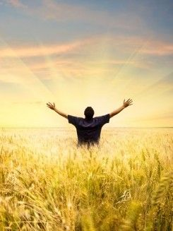 Healing Wisdom from Spirit