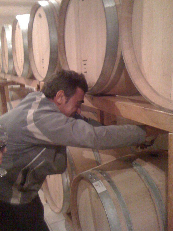 Winemaker Elias Bizios monitoring his barrels.