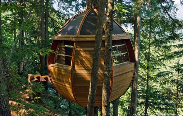 98 best images about tree house on pinterest trees a for Treeless treehouse