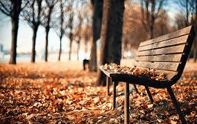 """Résultat de recherche d'images pour """"fall autumn pictures tumblr"""""""