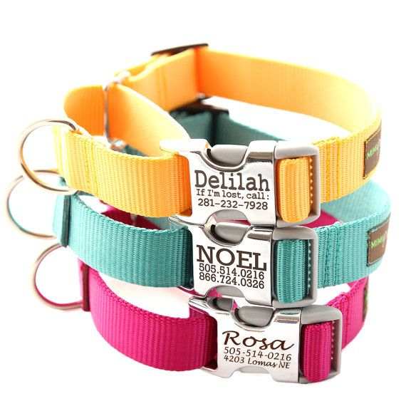 OOH. Buckle Martingale Personalized Dog Collar by shopmimigreen