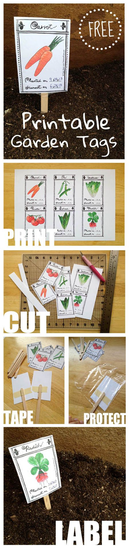 http://www.limetreefruits.com/garden-labels/ FREE Printable Garden Tags