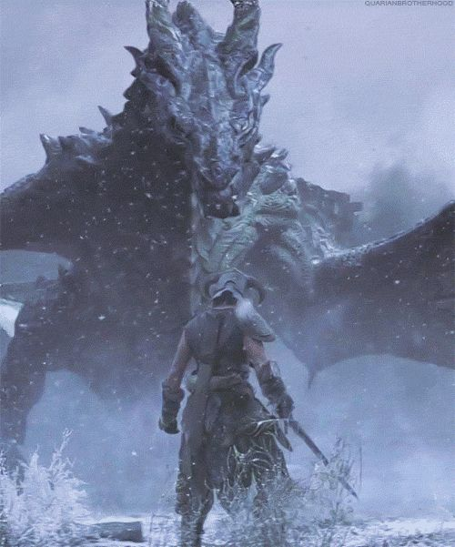 The dragons of Skyrim. These unpredictable monsters pose a great deal of difficulty in Elder Scrolls 5.