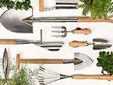 Monthly gardening tips & advice  - January - garden structures / RHS Gardening
