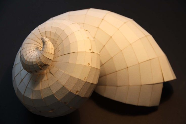 Paper Nautilus - Pouria; Intelligent Systems & Architectural Engineering Research Center.