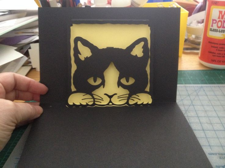 Cat in the window pop-up card