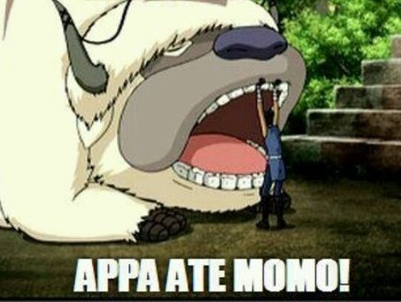 APPA ATE MOMO!。。。。。。^_^ Avatar the last airbender is the