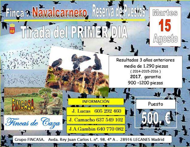 Tirada de Palomas        Primer día de la media veda, en la Comunidad de Madrid. Finca privada., Población : Navalcarnero      http://www.anunciocaza.com/ad/tirada-de-palomas/