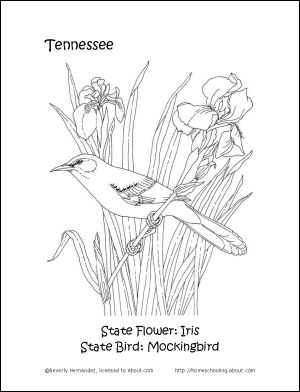 tn coloring pages - photo#25