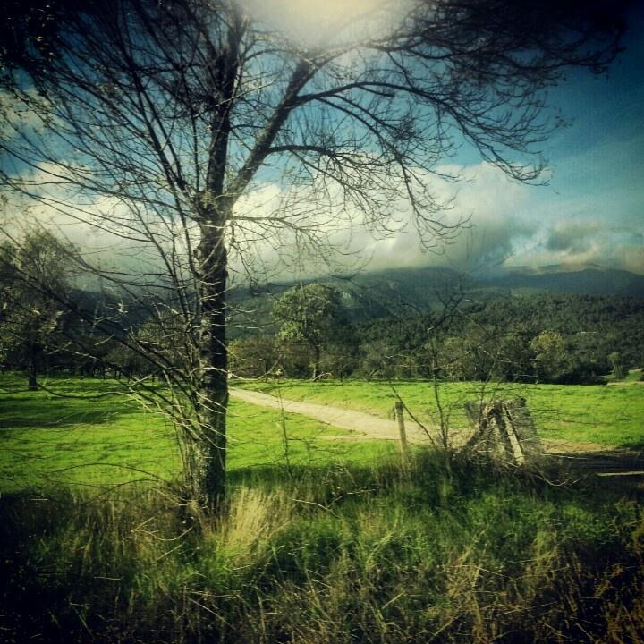 De La Adrada a Arenas