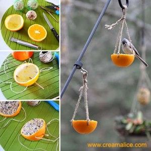 diy-mangeoire-oiseaux-orange-homemade