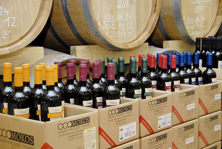 Ready for some Wine? - Készen állsz egy kis borozásra?