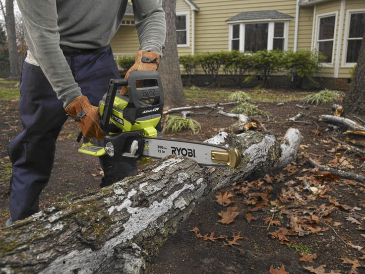 Best 25 ryobi chainsaw ideas on pinterest gas grills on sale bob vilas 2013 holiday gift guide for the tool lover ryobi cordless chainsaw greentooth Choice Image