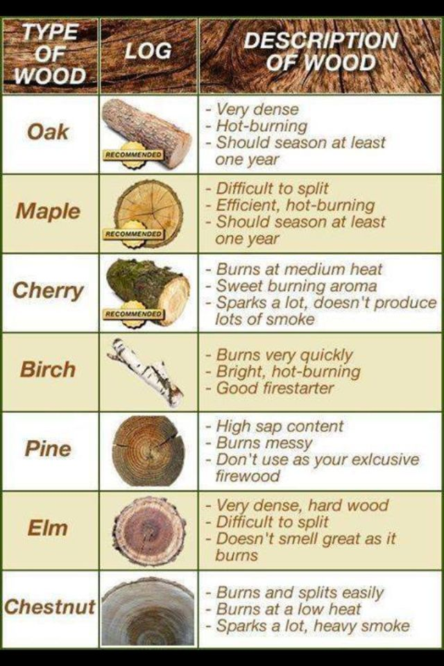 11 Best Images About Tree Identification On Pinterest