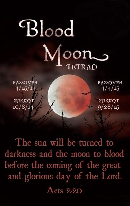 "We are approaching the only Blood Moon Tetrad in this Millennium. Four lunar eclipses occurring on the Passover and the Feast of Tabernacles in two successive years are phenomenal. But add to them two solar eclipses on the two days that open the Jewish year is uncanny. Jesus said, ""There will be signs in the sun, moon and stars…When these things begin to take place, stand up and lift up your heads, because your redemption is drawing near."" {Luke 21: 25a, 28} Fall 2015"