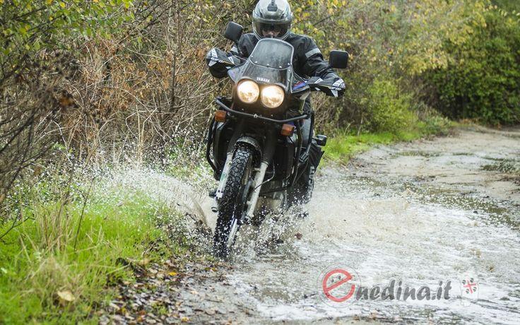 Raid degli oliveti: raid off-road non competitivo dei Pastori in Moto