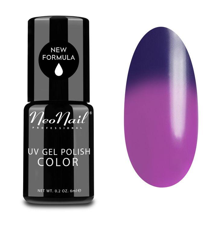 Purple Rain 5190-1