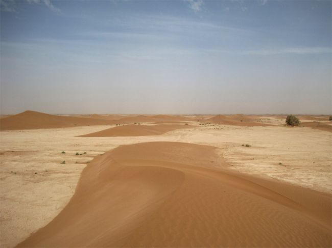 On the Edge of the Sahara: a guest post by Ann Lingard