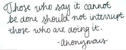 Those who say it cannot be done should not interrupt those who are doing it. -Anonymous